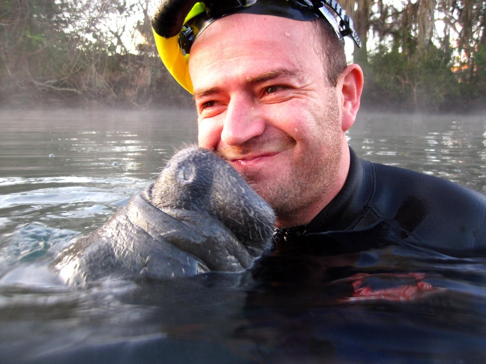 river ventures, swim with manatee