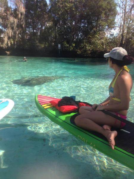 Paddle Tour Kayak Rental