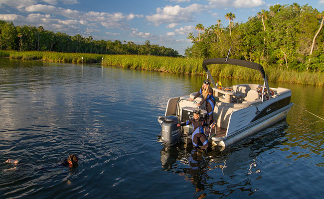 river ventures, vip manatee tour