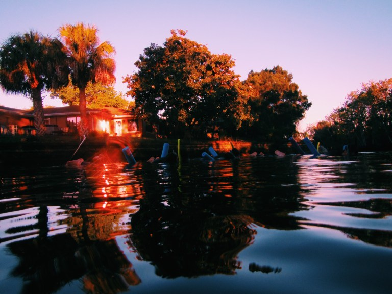 swimming with manatees at sunrise!