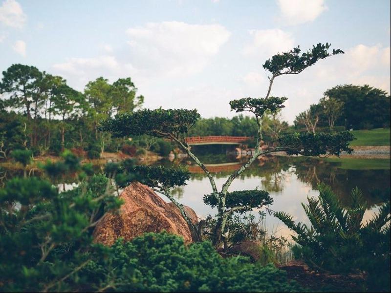 Credit: facebook.com | Morikami Museum & Japanese Gardens