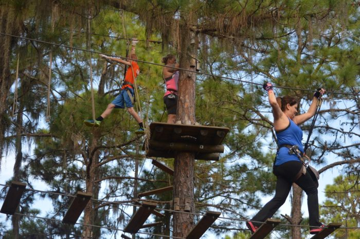Facebook/TreeUmph! Adventure Course