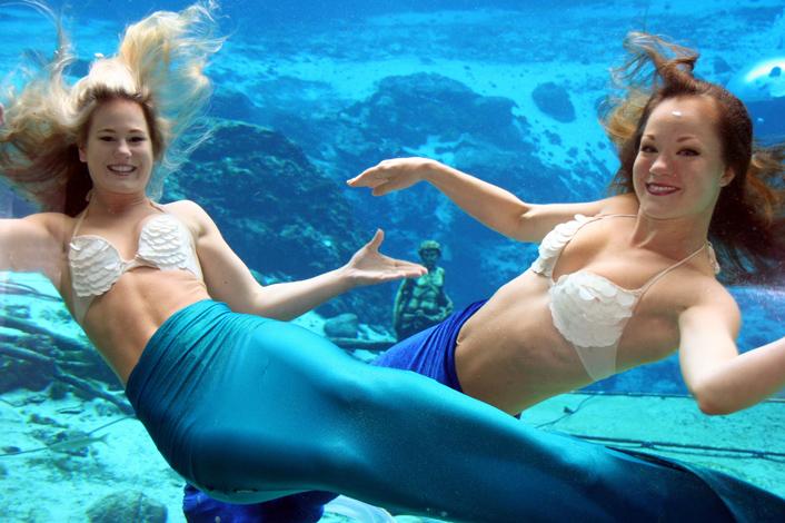mermaid show 2.jpg