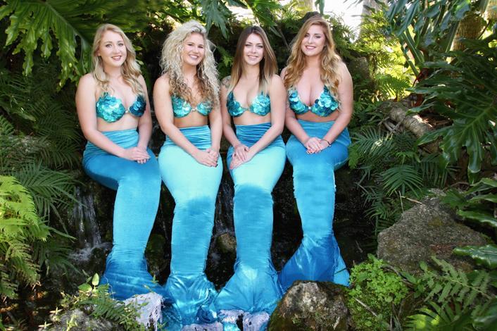 mermaid show.jpg