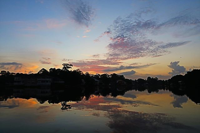Manatees are breathtaking......but starting the day off with a sunrise like this give us reasons to be grateful right from the beginning!!