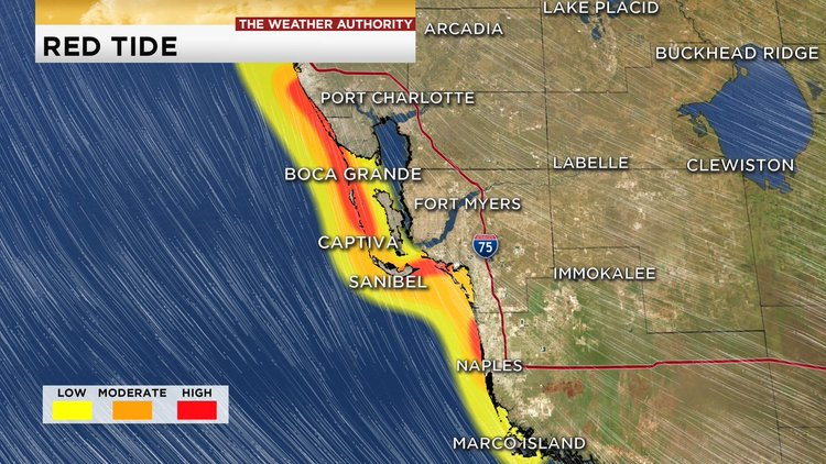 What Is Florida Red Tide Crystal River Homosassa Three