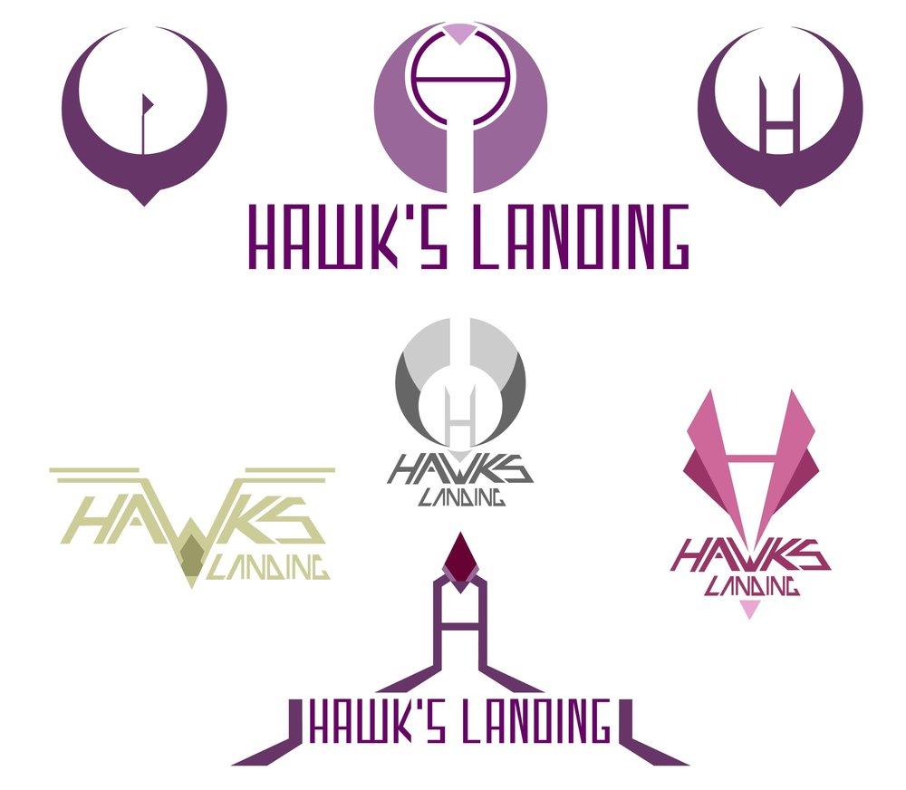 hawkLanding