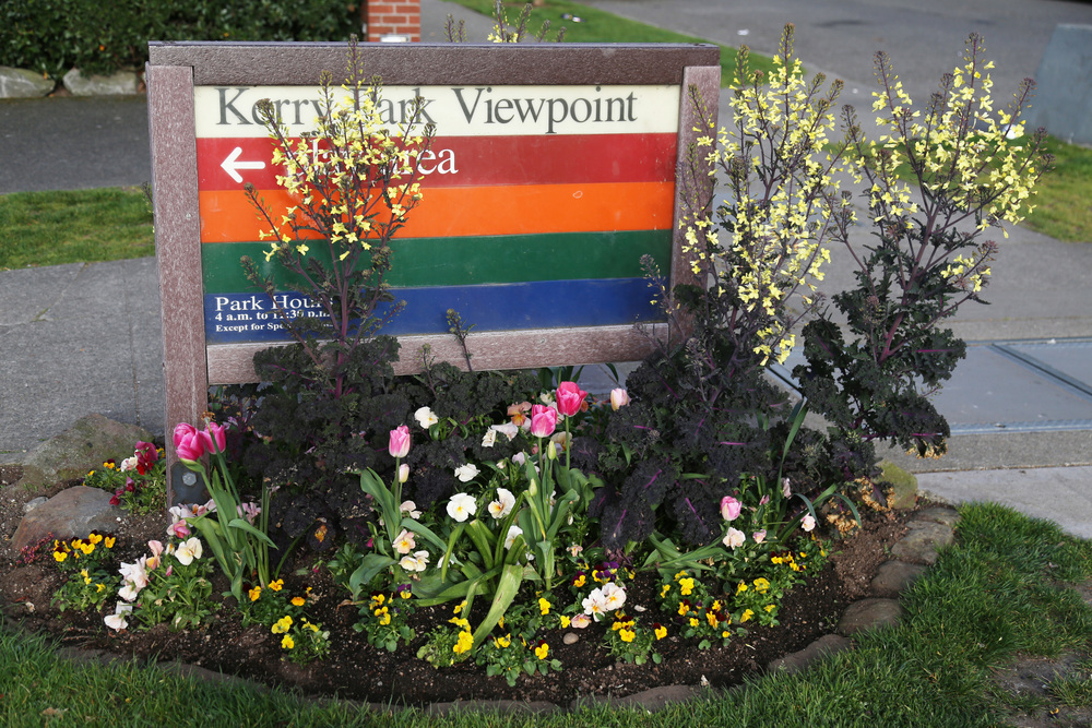 You can always identify Seattle parks by these colorful signs!