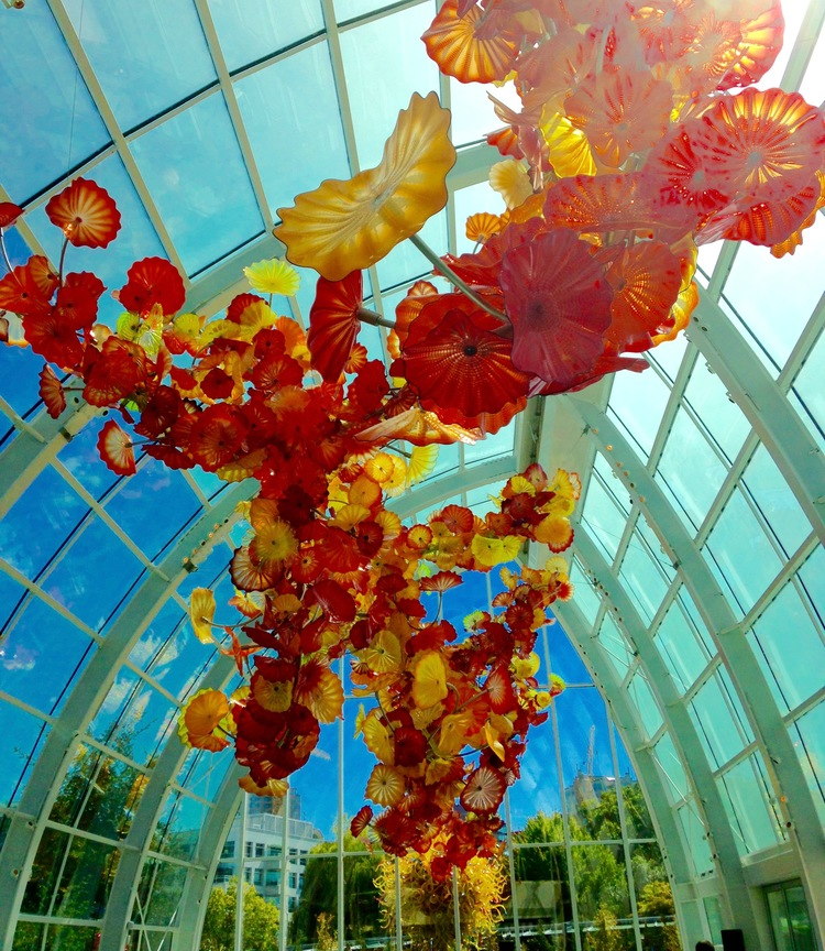One of the many spectacular Chihuly pieces in Seattle Center