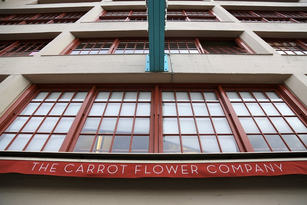 The Carrot Flower Company
