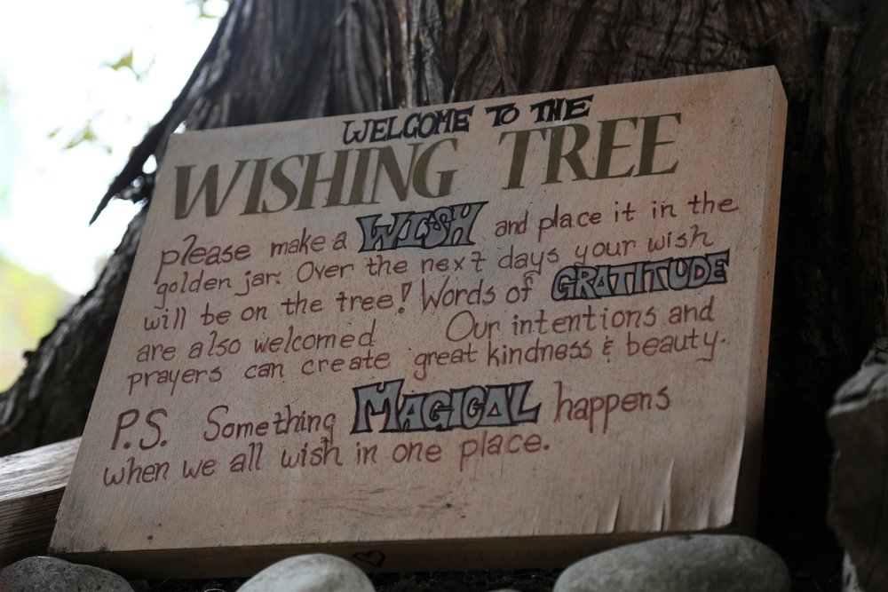 Seattle's Wishing Tree