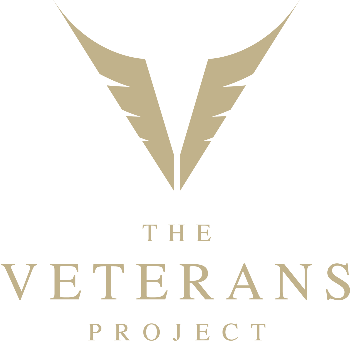 The Blog — The Veterans Project