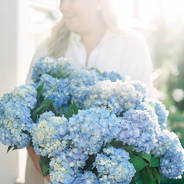 Today's wedding was filled with beautiful blue hydrangea ~ the bride's favourite... 💙