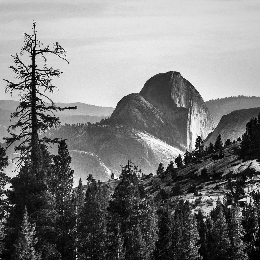 Homage to Ansel [2012] Yosemite NP, CA, USA