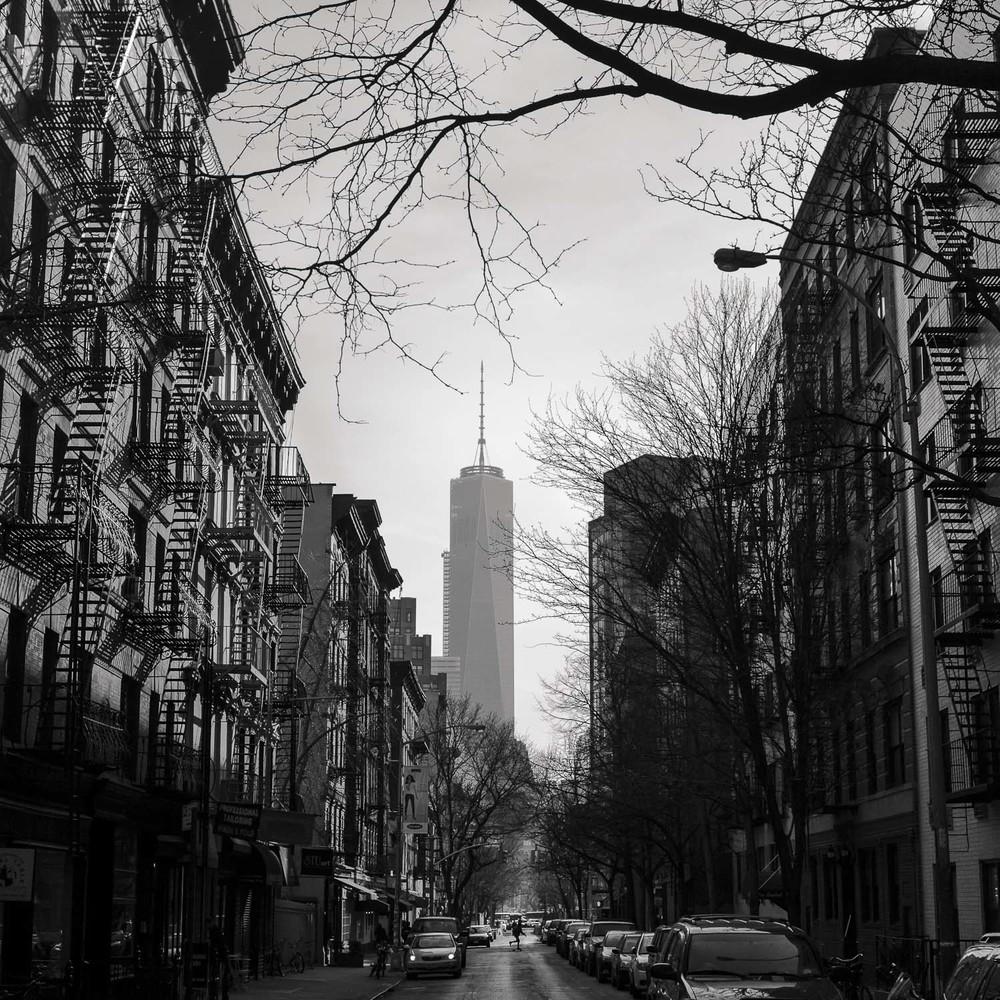 The Creation Of... [2014] NYC, NY, USA