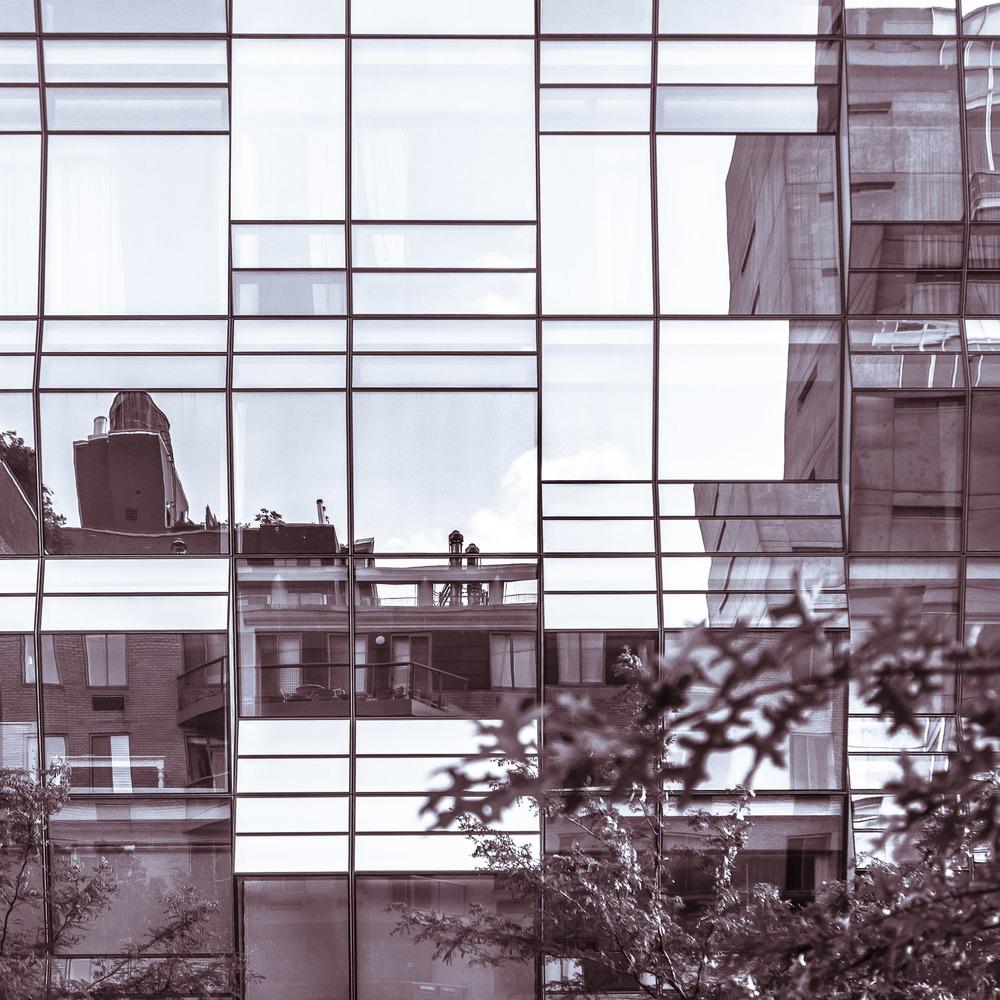 Confusionism [2015] NYC, NY, USA