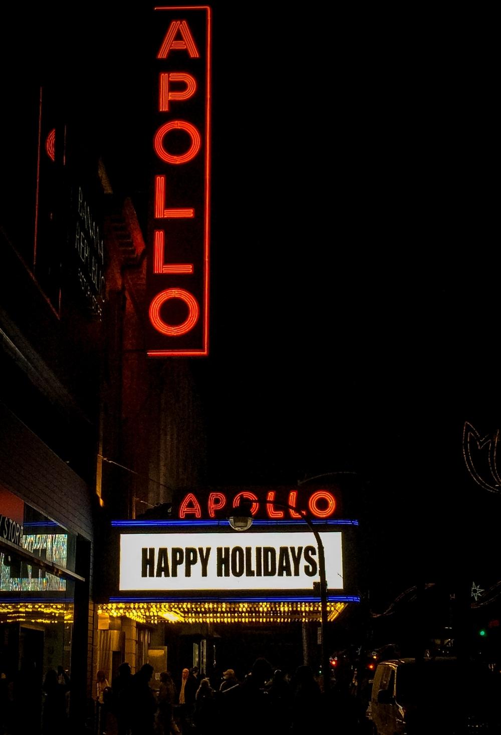CHRISTMAS NYC 2015_07.jpg