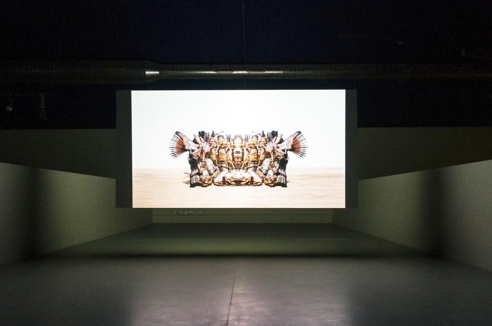 Baden Pailthorpe, Cadence, 2013 installation view