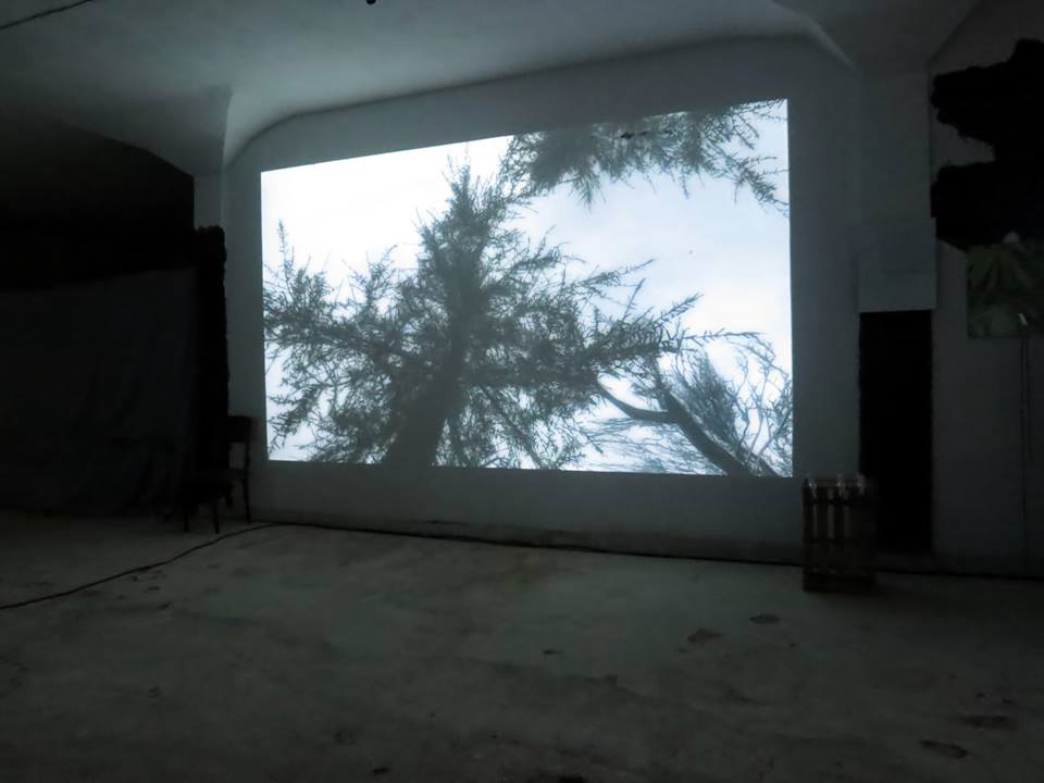 Marco Mendeni,  FOV 1 , 2012, installation view