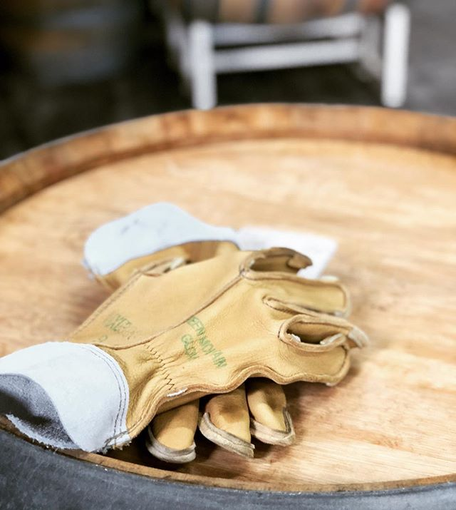 Spent the day in the winery - and these new @greenmountainglove were awesome! They kept my delicate, little hands safe... Thanks @samwise18 they worked like a charm!