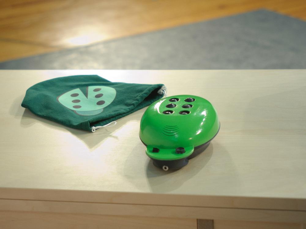 Green team's  Letterbug