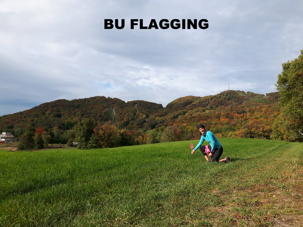 BU FLAGGING (PAUL HUPIN)