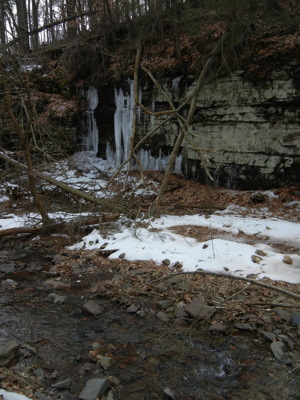The small stream and the rocky walls adorned with ice bordering Dark Hollow Road's descent to the River.