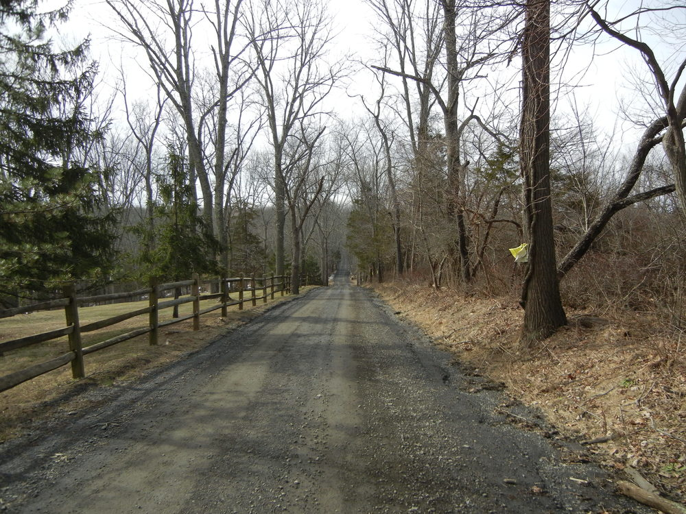 The suitable middle portion of Mt. Airy Road gravel was quite enjoyable.