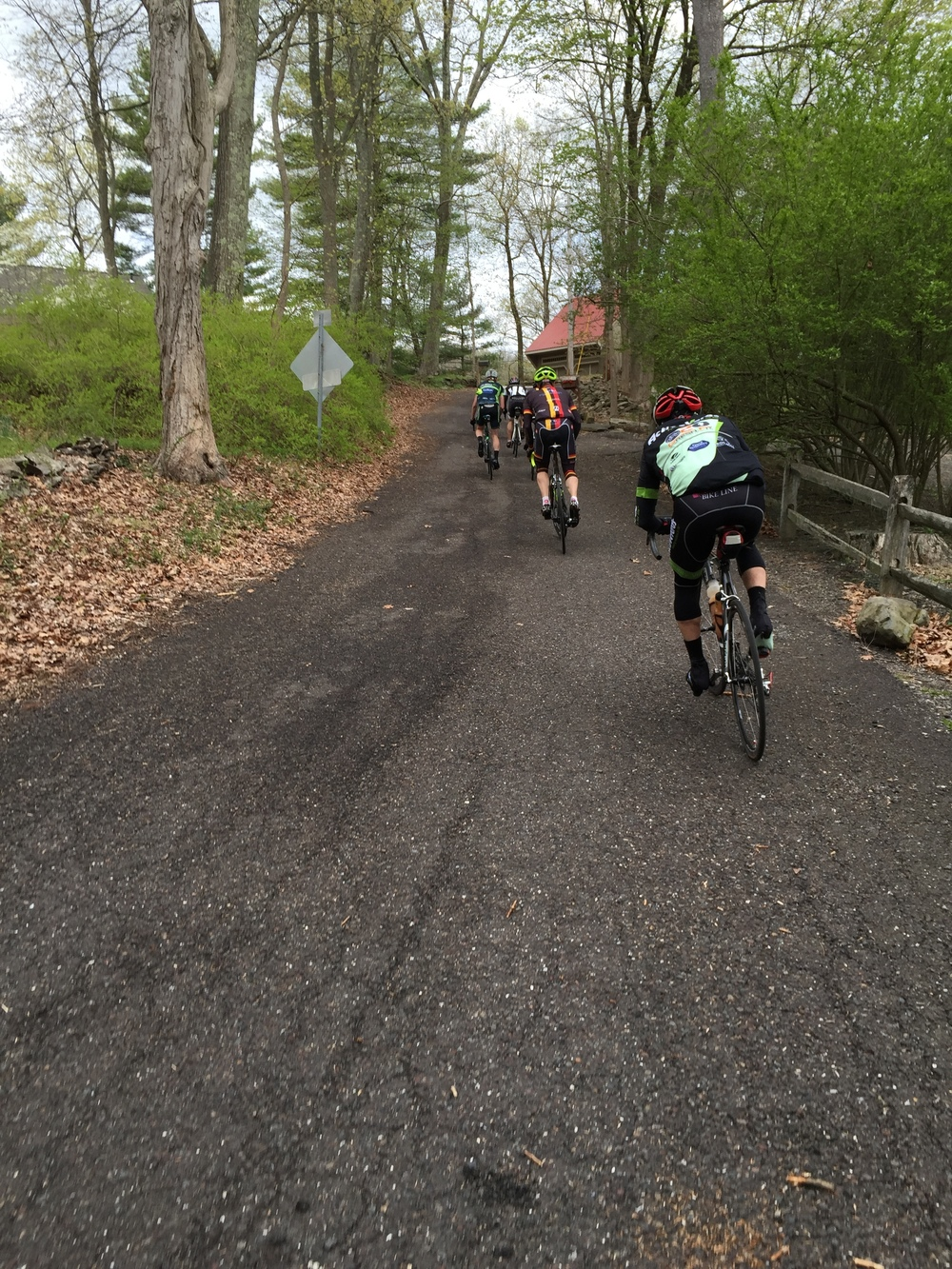 Caught by the lead group, we climbed Stover Park Road together. Stover Park Road is a closed road and is barely maintained.