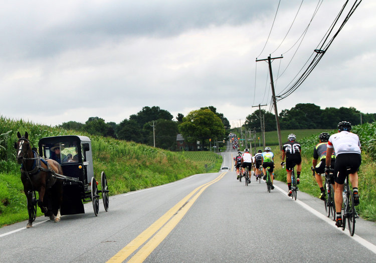 Ride in Pennsylvania long enough and this sight will become fairly common. The fact that the ride is paired with local cuisine has us hoping to make it to Farm to Fork Fondo's Lancaster edition in 2017.