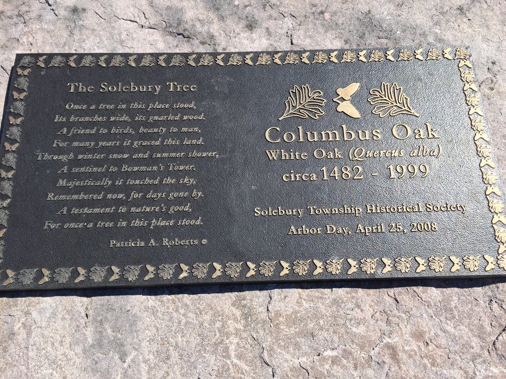 Plaque dedication detail at the base of the Columbus Oak.