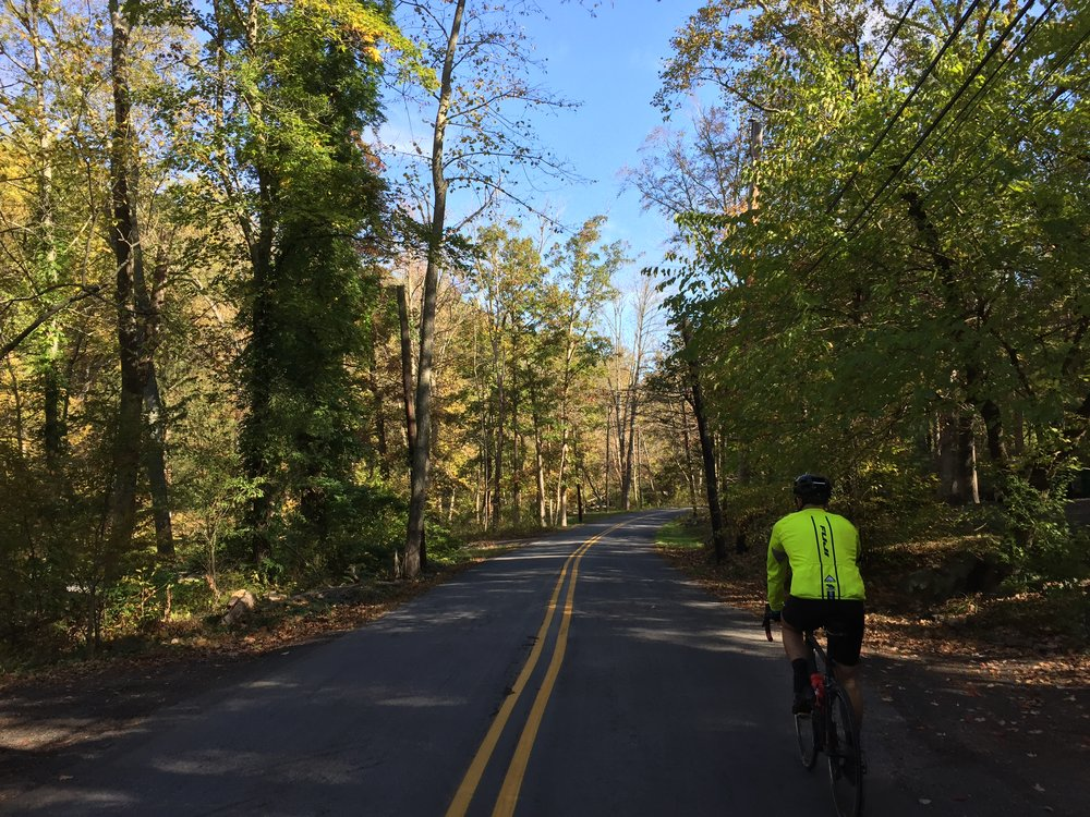 One of the most enjoyable roads on the Oktoberfest Ride, Swamp Creek Road.