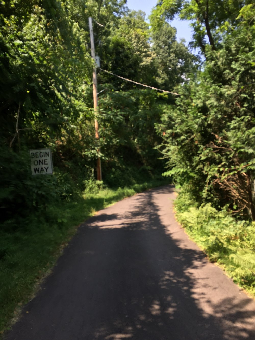 The shady overgrown unmaintained Uhlerstown Road has a seasonal gate at the top and bottom like Platte Cove Road in the Tour of the Catskills.