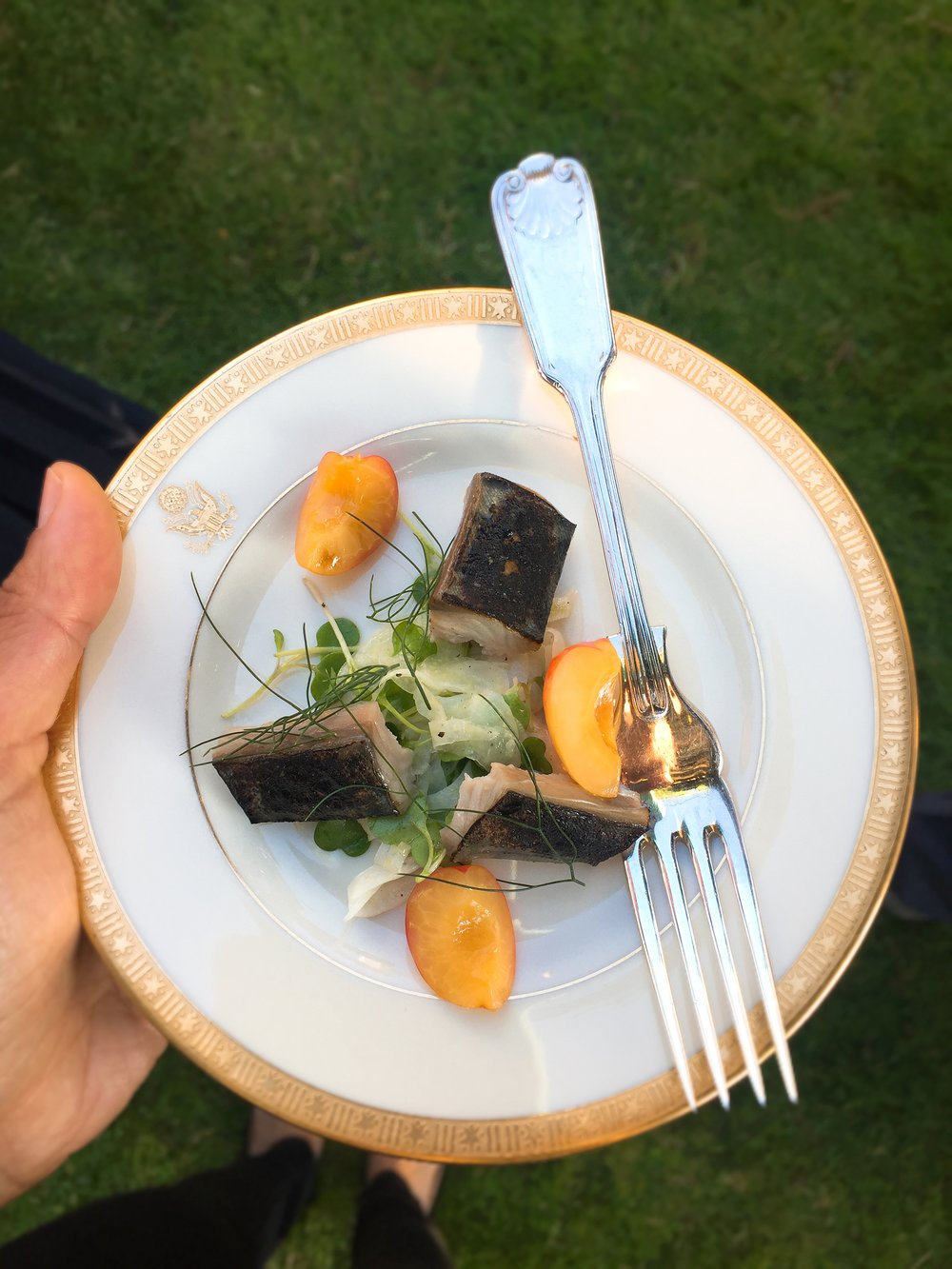 Mackerel and rainier cherries