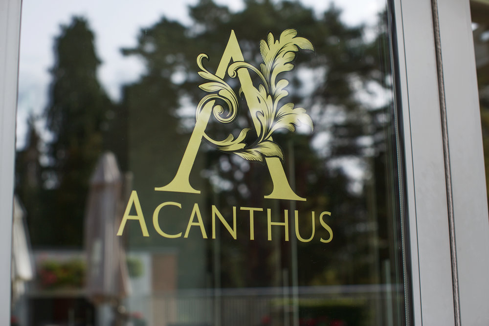 Acanthus restaurant Ascot - review