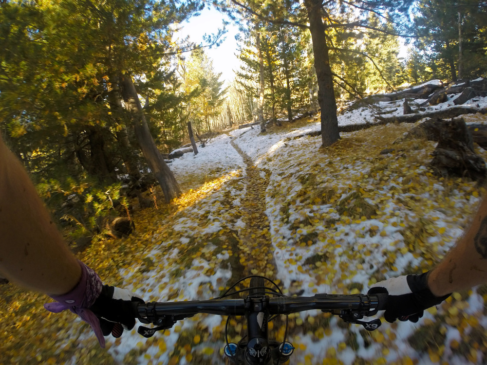 Mountain Biking at Hart Prairie in the Winter, Flagstaff, Arizona