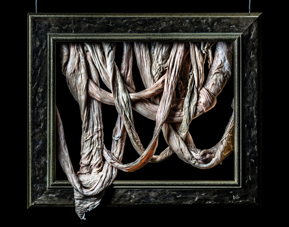 meat-frame-1.jpg