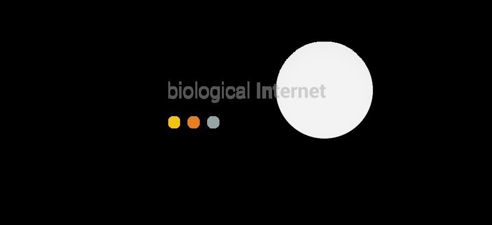 biological Internet | LEONBOYD.COM