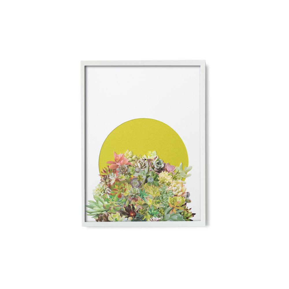 StephenEichhorn-216-framed.jpg