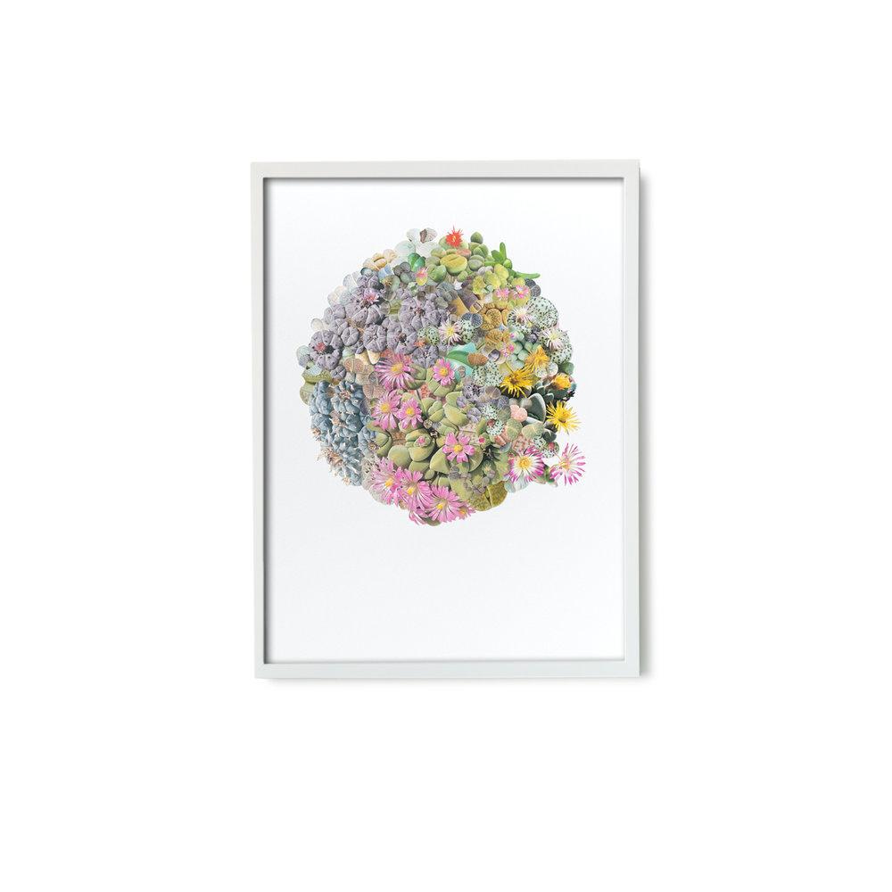 StephenEichhorn-180-framed.jpg