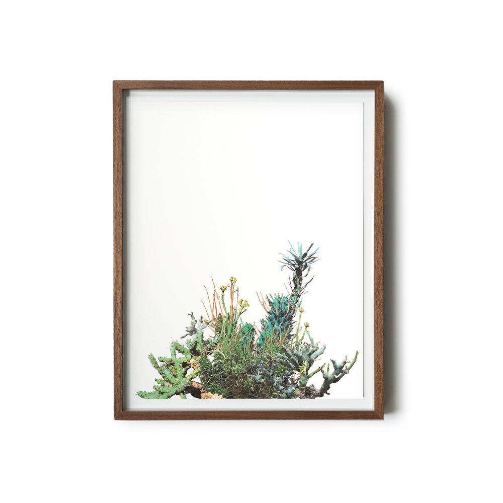 StephenEichhorn-201-framed.jpg
