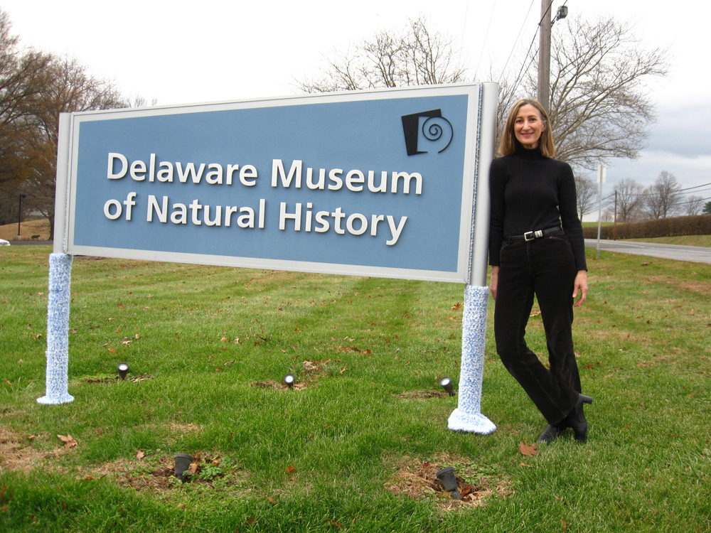 Sign with blue leg-warmers, Delaware Museum of Natural History.JPG