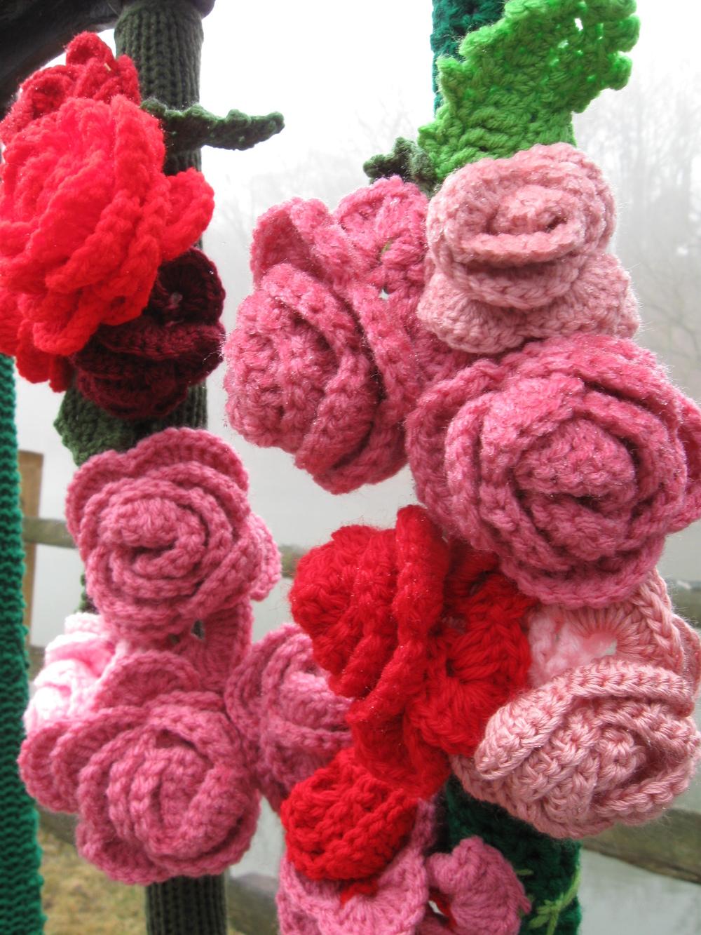 Roses closeup 3-26.JPG