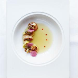 Shrimp Segnette