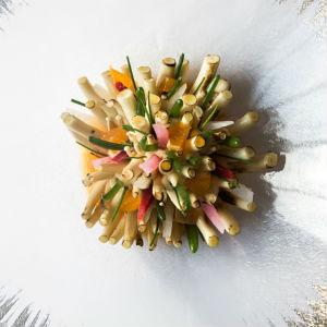 Beech Anemone