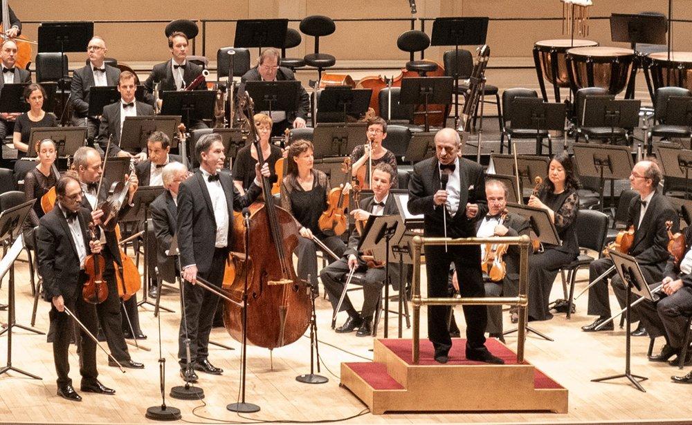 aw_82082_Festival Orchestra.jpg