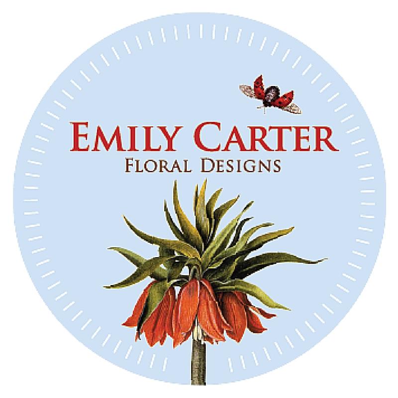 Emily Carter.jpg