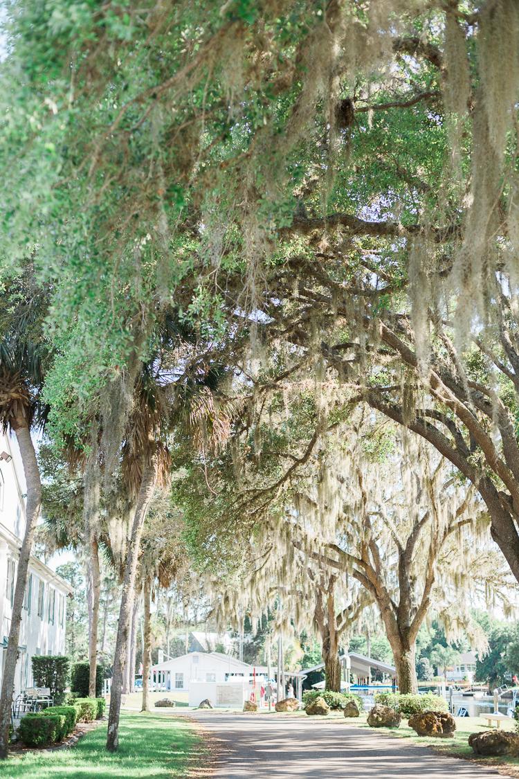 Plantation_Crystal_River_Tampa_Wedding_Photo_Caroline & Keith-7