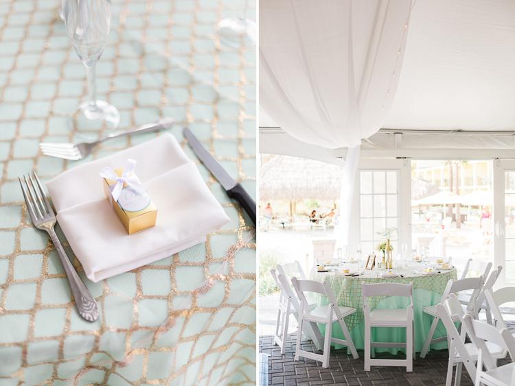 sirata-beach-resort-wedding-photo-st. pete-danielle & phil-100