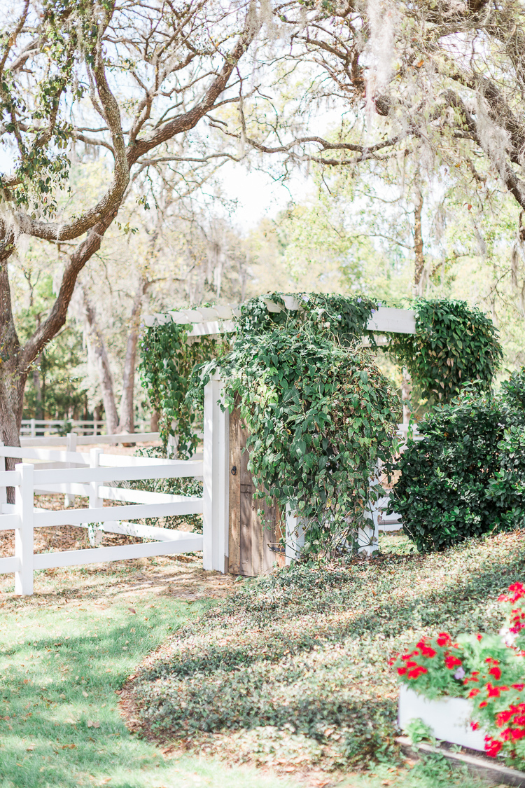 bramble-tree-estate-wedding-orlando-photo-4.jpg